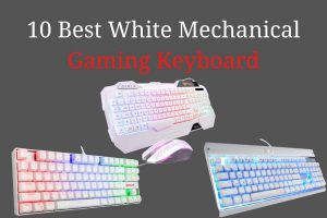 10 Best White Mechanical Gaming Keyboard in 2020